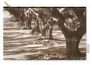 Southern Sunlight On Live Oaks Carry-all Pouch