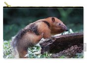 Southern Tamandua Or Collared Anteater Carry-all Pouch