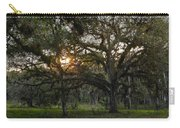 Spanish Moss During Sunset Carry-all Pouch