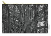 Spanish Moss Of The Tree Carry-all Pouch