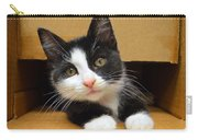 Special Delivery Tuxedo Kitten Carry-all Pouch