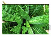 Spectacular Green Foliage Carry-all Pouch