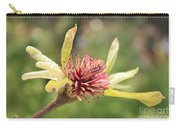 Spent Tulip Tree Blossom Carry-all Pouch