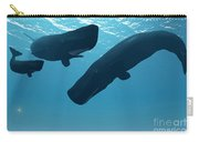 Sperm Whale Encounter Carry-all Pouch