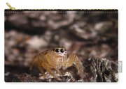 Spider Eyes Carry-all Pouch