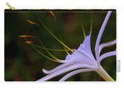 Spider Lilly Blue Carry-all Pouch by Susanne Van Hulst