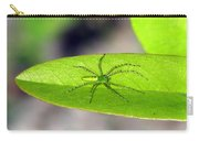 Spider On Pawpaw Carry-all Pouch