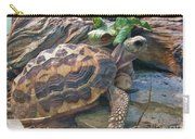 Spider Tortoise       Zoo    Indiana Carry-all Pouch