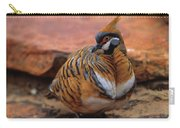 Spinifex Pigeon Carry-all Pouch