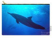 Spinner Dolphin Carry-all Pouch