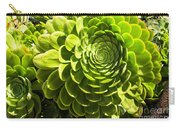 Spiral Succulant Carry-all Pouch