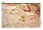 Splash Of Color In Valley Of Fire's Wash 3 Carry-all Pouch