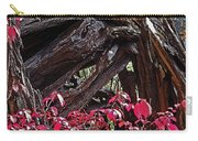 Splash Of Red Carry-all Pouch