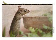 Sports Mouse Carry-all Pouch