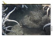 Spot Coloured Fish Carry-all Pouch