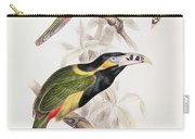 Spotted Bill Aracari Carry-all Pouch by Edward Lear