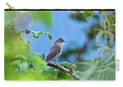 Spotted Flycatcher Muscicapa Striata .  Carry-all Pouch