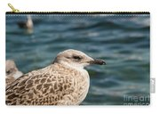 Spotted Seagull Carry-all Pouch