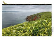 Spring At Chimney Rock Carry-all Pouch