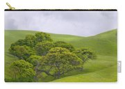 Spring At Del Valle Carry-all Pouch