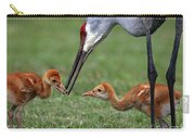 Spring Babies  Carry-all Pouch