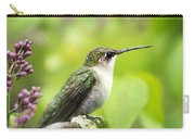 Spring Beauty Hummingbird Square Carry-all Pouch