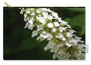 Spring Bloomers 2 Carry-all Pouch