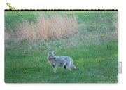 Spring Coyote  Carry-all Pouch