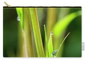 Spring Droplets Carry-all Pouch