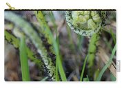 Spring Ferns Carry-all Pouch