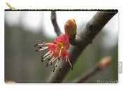 Spring Flower Closeup 1 Carry-all Pouch