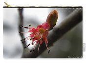 Spring Flower Closeup 2 Carry-all Pouch