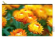 Spring Flowers In The Afternoon Carry-all Pouch