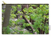Spring In The Mountains At American Fork Canyon Utah Carry-all Pouch