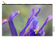 Spring Iris Three Carry-all Pouch