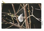 Spring Is On The Way Carry-all Pouch