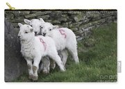 Spring Lambs 2 Carry-all Pouch