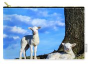 Spring Lambs Evening Light Carry-all Pouch