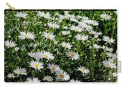 Spring Loyal Love Daisies  Carry-all Pouch
