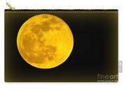 Spring Moon Rising Carry-all Pouch