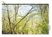Spring On A Pennsylvania Stream, Fairmount Park, Philadelphia Carry-all Pouch