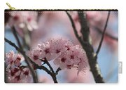 Spring On The Air Carry-all Pouch