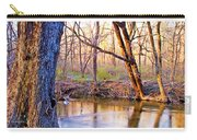 Spring, Pennypack Creek, Pennsylvania Carry-all Pouch