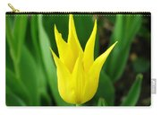 Spring Radiance Carry-all Pouch