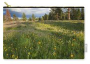 Spring Shadows Carry-all Pouch by Mike  Dawson
