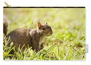 Spring Squirrel Carry-all Pouch