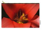 Spring Star Carry-all Pouch