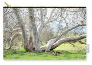 Spring Sycamore Tree Carry-all Pouch