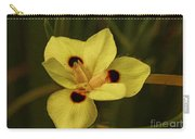 Spring Time In Florida Carry-all Pouch