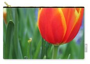 Spring Tulips 214 Carry-all Pouch